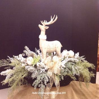 Centerpiece is one of the most important and focus point of any party. You should place Christmas c