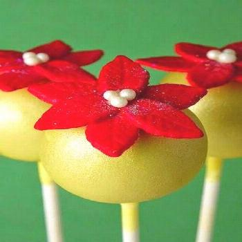 Christmas is right around the corner! Are you ready?? I've got 30 wonderful Christmas Cake Pop idea