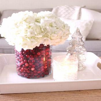Easy Christmas Centerpiece: DIY Cranberry Vase - Tonality Designs,  Easy Christmas Centerpiece: DIY