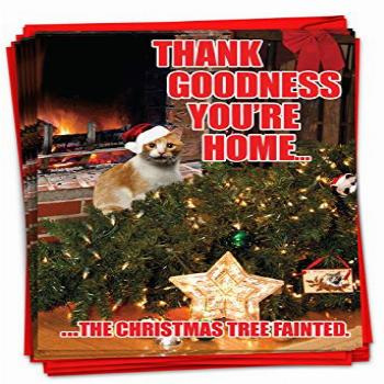 NobleWorks - 12 Boxed Christmas Greeting Cards Funny -